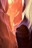 Abaixe a garganta do antílope Fotografia de Stock