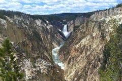 Abaixe o parque nacional de Yellowstone das quedas Fotografia de Stock