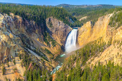 Abaixe quedas de Grand Canyon do parque nacional de Yellowstone Imagem de Stock
