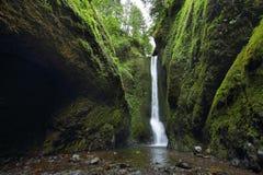 Abaixe quedas no desfiladeiro de Oneonta Desfiladeiro do Rio Columbia Foto de Stock Royalty Free