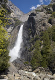 Abaixe Yosemite Falls Imagens de Stock Royalty Free