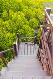 Abaixo das escadas, feitas da madeira imagem de stock royalty free