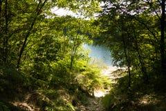 Abajo al lago Foto de archivo