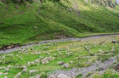 Abajo al valle Foto de archivo