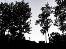 Abajo de la colina Fotografía de archivo