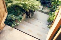 Abajo de las escaleras en estilo del vintage, hay arbusto bajo que los árboles adornan los dos lados de la trayectoria Es popular Imagen de archivo
