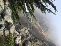 Abajo del acantilado Imagen de archivo libre de regalías