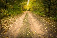 Abajo del camino de tierra Imagen de archivo libre de regalías