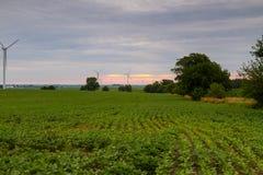 Abajo del valle con los campos de la soja y las turbinas de viento Foto de archivo