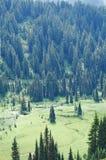 Abajo en el valle Imagen de archivo libre de regalías