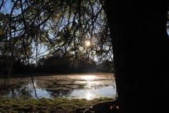 Abajo en la granja y el lago Fotografía de archivo libre de regalías