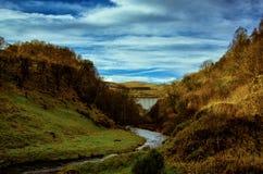 Abajo en una cañada escocesa hermosa Imagen de archivo libre de regalías