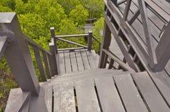 Abajo escaleras al bosque verde Imágenes de archivo libres de regalías