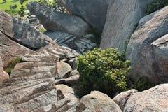 Abajo pasos en la colina Foto de archivo
