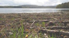 Abajo por el lago Foto de archivo libre de regalías
