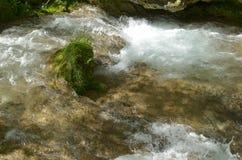 Abajo por el río Fotos de archivo libres de regalías