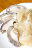 Abalone. Fresh abalone on the dish Royalty Free Stock Photos