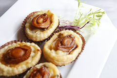 Abalone stock photos