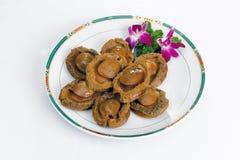 Abalone Royalty-vrije Stock Fotografie