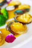 abalone afrykanina południe Obraz Royalty Free
