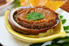 Abalone Royalty Free Stock Image