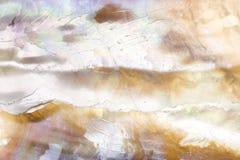 Abalone shell textuur die met macrolens is ontsproten stock afbeelding