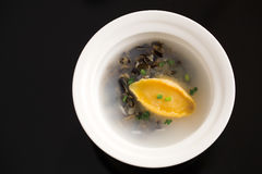 Abalone soup Stock Image