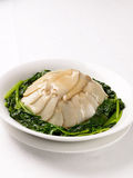 Abalone with spinach Stock Images