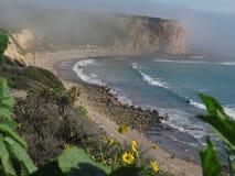 Abaloneliten vik, Kalifornien Arkivbild