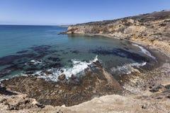 Abaloneliten vik sydliga Kalifornien Fotografering för Bildbyråer
