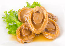 Abalones. Chinese cuisine abalone on background. Stock Photography