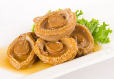 Abalones. Chinese cuisine abalone on background. Stock Photo