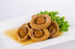 abalones Kinesisk kokkonstabalone på bakgrund Royaltyfri Bild