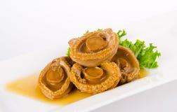 Abalones. Kinesisk kokkonstabalone på bakgrund. Royaltyfria Bilder