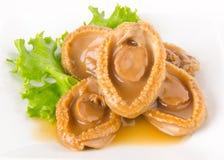 abalones Kinesisk kokkonstabalone på bakgrund Arkivbild
