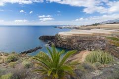 Abama beach and banana plantation, Tenerife Royalty Free Stock Photos