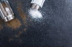 Abanador de sal rústico e de pimenta fotos de stock royalty free
