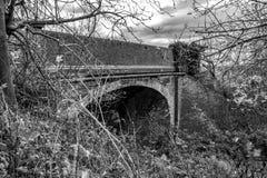 Abandoedm, baksteen-gebouwde die spoorwegbrug dichtbij zwaar kreupelhout in het UK wordt gezien stock afbeelding