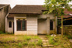 Abandon house not maintained with bush and small plant grow near that in bogor indonesia. Java stock illustration