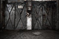 Abandon industrial interior Stock Photo