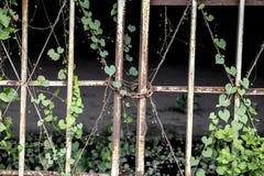 Abandon locked place. royalty free stock photography