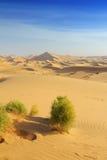 Abandona la duna Imagen de archivo libre de regalías