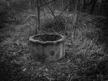 Abandonado bien en la madera Imagen de archivo