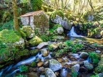 Abandonado poca casa en el bosque en valle haga el Duero Foto de archivo