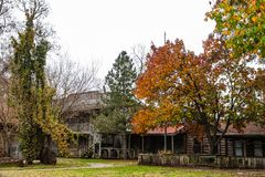 Abandonded Frontier City Replica With Log Buildings In The Autumn Royalty Free Stock Image
