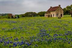 Abandonded gammalt hus i Texas Wildflowers Royaltyfria Bilder