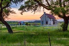 Abandonded gammalt hus i Texas Wildflowers Royaltyfria Foton