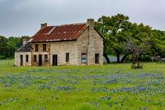 Abandonded gammalt hus i Texas Wildflowers Arkivbild