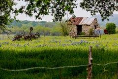Abandonded gammalt hus i Texas Wildflowers Arkivfoton