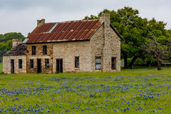 Abandonded gammalt hus i Texas Wildflowers Royaltyfri Bild